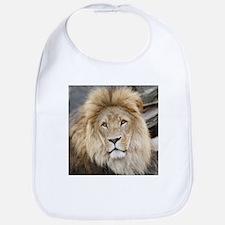Lion20150802 Bib
