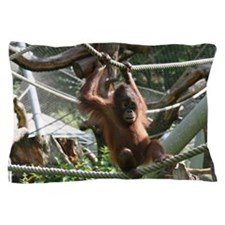 Baby Orangutan Hang in there Pillow Case