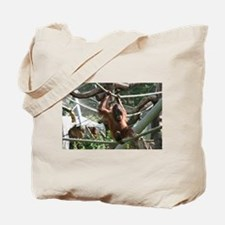 Baby Orangutan Hang in there Tote Bag