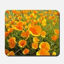California Poppy's Mousepad