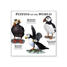"Cute Waterbirds Square Sticker 3"" x 3"""
