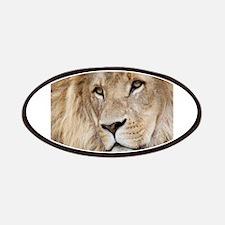 Lion20150804 Patch