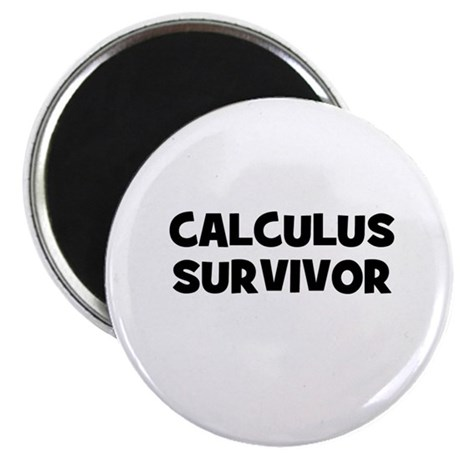Calculus Survivor Magnet