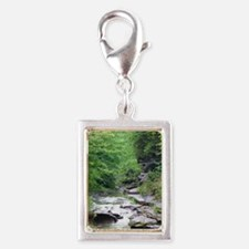 forest river scenery Charms