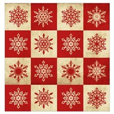 Snowflakes in Squares Poster