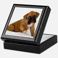 Fawn Boxer Puppy Keepsake Box