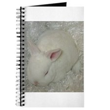 Mini Rex Baby Journal