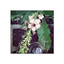 """Flowers and a vintage insul Square Sticker 3"""" x 3"""""""
