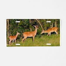 Deer Tryst Aluminum License Plate
