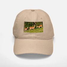 Deer Tryst Baseball Baseball Cap