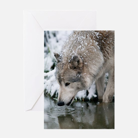 Unique Wolf Greeting Card