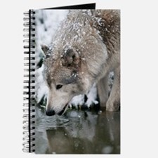 Cool Wolf Journal