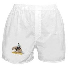 Draggin Tail  Boxer Shorts