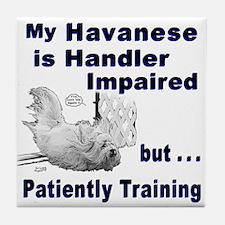 Havanese Agility Tile Coaster