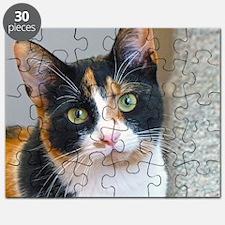 Bandit Puzzle