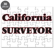 California Surveyor Puzzle