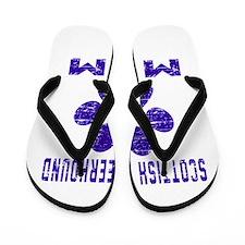 Scottish Deerhound mom designs Flip Flops