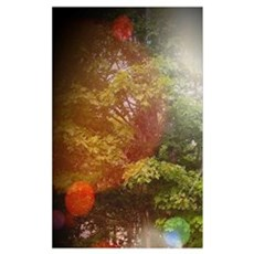 Magical Mystical Woodland Morning Poster