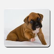 Fawn Boxer Puppy Mousepad