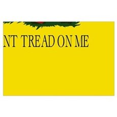 Don't Tread on Me Building Block Poster