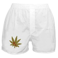 Rx Marijuana Boxer Shorts