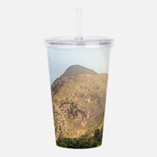 Welsh mountain and rai Acrylic Double-wall Tumbler