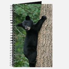 bear cub 2007 Journal