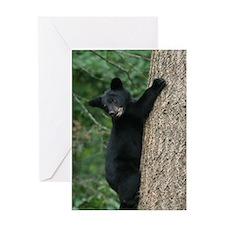 bear cub 2007 Greeting Card