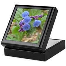 Virginia Bluebells Keepsake Box