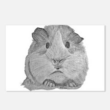 Guinea Pig by Karla Hetzler Postcards (Package of