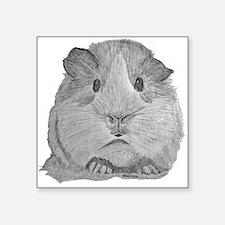 Guinea Pig by Karla Hetzler Sticker