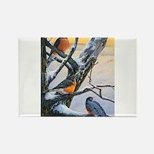 SRose Winter Robins Magnets