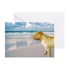 Cute Sea dogs Greeting Card