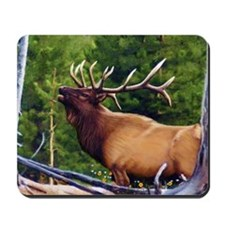 The Bugler Mousepad