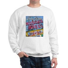 Amusement parks Sweatshirt