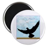 Pigeon Fly Home Magnet
