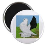 "Russian Pigeon 2.25"" Magnet (10 pack)"