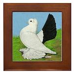 Russian Pigeon Framed Tile
