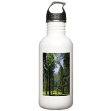 sequoia national park Water Bottle