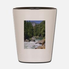 sequoia national park Shot Glass