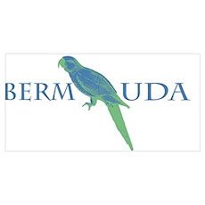 Bermuda Parrot Poster