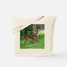 Cute Buck Tote Bag
