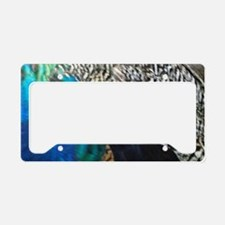 Male Peacock Side Feathers License Plate Holder