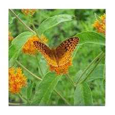 Butterfly Weed Tile Coaster