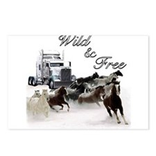Wild & Free Postcards (Package of 8)