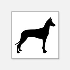 "Pharaoh Hound Square Sticker 3"" x 3"""
