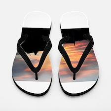 Sunset Barn Flip Flops