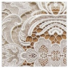 girly hipster vintage white lace  Poster