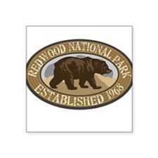 "Cute Redwood national park Square Sticker 3"" x 3"""