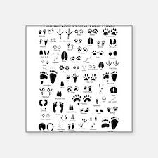 "Cute Wildlife Square Sticker 3"" x 3"""
